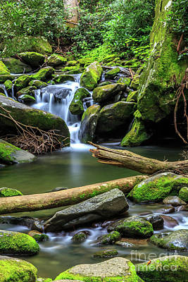 Photograph - Mountain Stream Iv by Gene Berkenbile