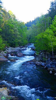 Mountain Stream Original by Michael Rucker