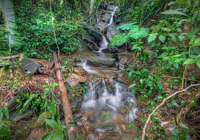 Photograph - Jungle Waterfall by Nadia Sanowar