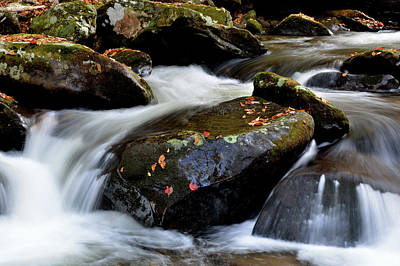 Photograph - Mountain Stream Rushes In by Patricia Twardzik