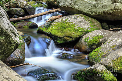 Photograph - Mountain Stream V by Gene Berkenbile