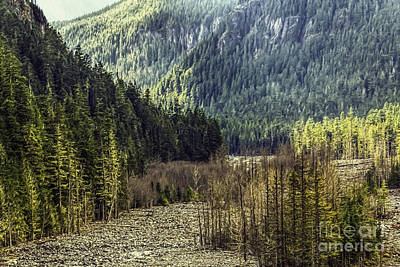 Photograph - Mountain Valley Light by Jean OKeeffe Macro Abundance Art