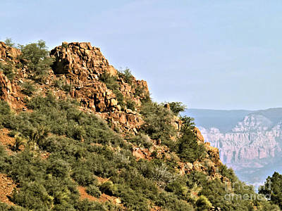 Photograph - Mountain Veiw From Jerome St. Park by Jym Wells