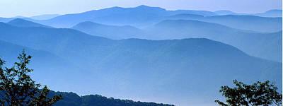 Photograph - Mountain Velvet by Alan Lenk