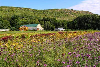 Photograph - Mountain View Farm Easthampton by Sven Kielhorn