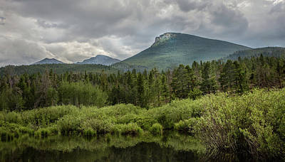 Photograph - Mountain View From The Marsh by James Woody