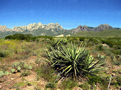 New Mexico Photograph - Mountain View Las Cruces by Kurt Van Wagner