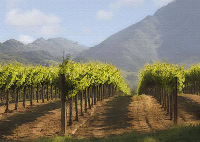 Napa Digital Art - Mountain Vineyard by Sharon Foster