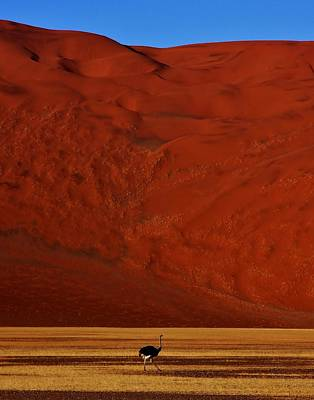 Sossusvlei Area Photograph - Mountainous Dune by Stacie Gary