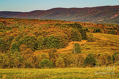 Photograph - Mountains 1564t by Doug Berry