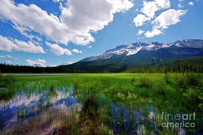 Photograph - Mountains And Marsh by David Arment