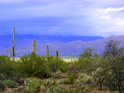 Mountains And Saguaros Art Print by Teresa Stallings