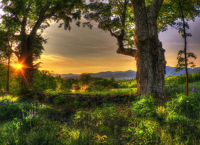Photograph - Mountains Meadow Sunrise - White Mountains Nh by Joann Vitali