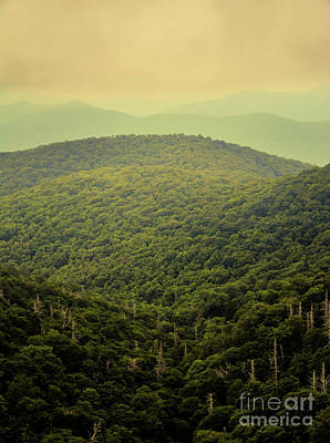 Photograph - Mountains On The Blue Ridge Parkway - North Carolina by Adrian DeLeon