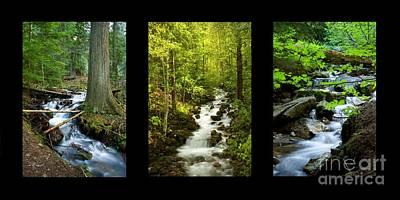 Photograph - Mountains Streams Trio by Idaho Scenic Images Linda Lantzy