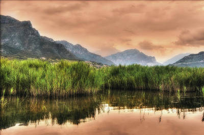 Photograph - Mountainscape With Canebrake by Roberto Pagani