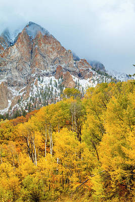 Photograph - Mountainside Of Fall Color by Teri Virbickis