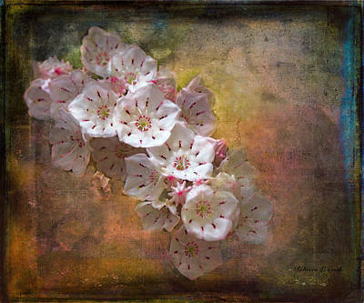 Closeup Mixed Media - Mountain Laurel by Bellesouth Studio