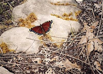 Mourning Cloak Art Print by Conrad Mieschke