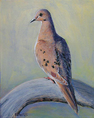 Mourning Dove Art Print by Charles Wallis