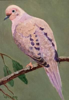 Mourning Dove Art Print by Linda Hiller