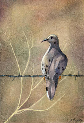 Egg Tempera Mixed Media - Mourning Dove On Barb Wire by Lori  Presthus