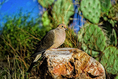Mark Myhaver Digital Art Rights Managed Images - Mourning Dove op7 Royalty-Free Image by Mark Myhaver