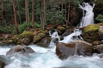 Pigeon In Park Photograph - Mouse Creek Falls During Winter by Carol R Montoya