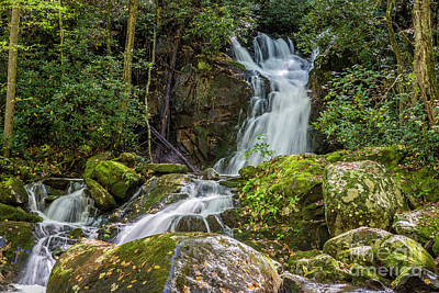 Photograph - Mouse Creek Falls by Patrick Shupert
