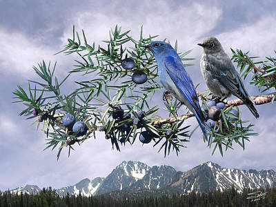 Painting - Mountain Bluebirds And Juniper by IM Spadecaller