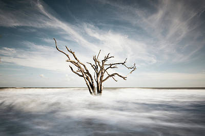 Botany Bay Photograph - Movement by Ivo Kerssemakers