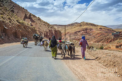 Photograph - Moving Live Stock And Goods In Morocco by Patricia Hofmeester