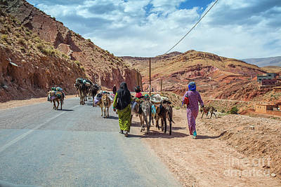 Berber Woman Photograph - Moving Stock by Patricia Hofmeester