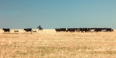 Cowgirl Photograph - Moving The Herd by Todd Klassy