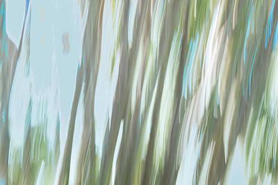 Digital Art - Moving Trees 16 Carry-on Landscape Format by Gene Norris