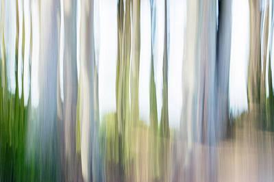 Digital Art - Moving Trees 24 Carry-on Landscape Format by Gene Norris