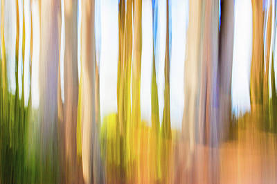 Digital Art - Moving Trees 25 Carry-on Landscape Format by Gene Norris