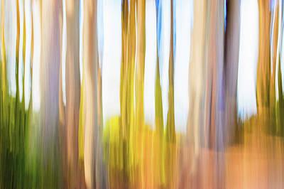 Digital Art - Moving Trees 25 Carry-on Landscape Format by Gene Norris