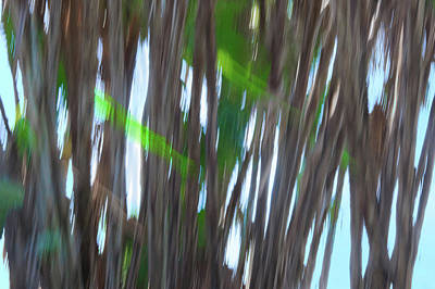 Digital Art - Moving Trees 26 Carry-on Landscape Format by Gene Norris