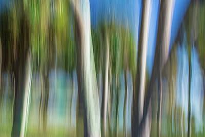 Digital Art - Moving Trees 31 Landscape Format by Gene Norris