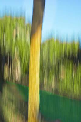 Digital Art - Moving Trees 32 Portrait Format by Gene Norris