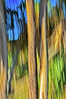 Digital Art - Moving Trees 33 Portrait Format by Gene Norris