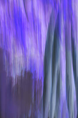 Digital Art - Moving Trees 37-36 Portrait Format by Gene Norris