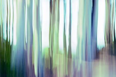 Photograph - Moving Trees 3-2 by Gene Norris