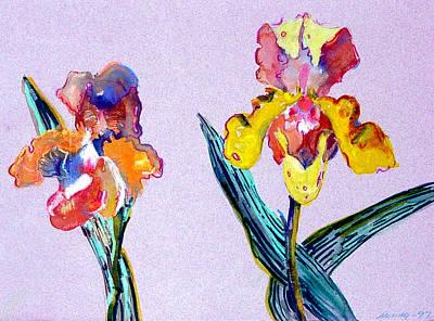 Iris Drawing - Mr. And Mrs. Yellow Iris by Mindy Newman