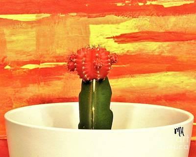 Photograph - Mr Cactus by Marsha Heiken