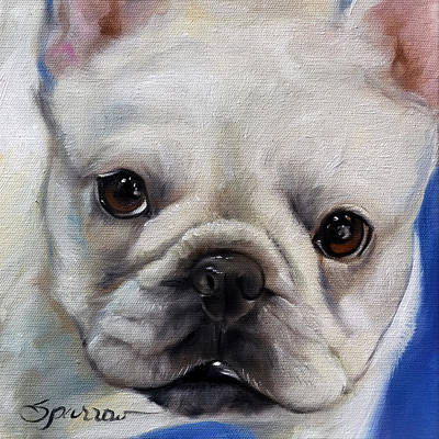 French Bull Dog Wall Art - Painting - Mr. French by Mary Sparrow