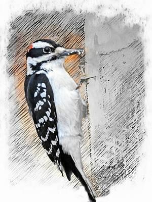 Digital Art - Mr. Hairy Woodpecker by Rusty R Smith