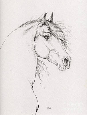 Horses Drawing - mr Handsome 2015 12 03 by Angel Tarantella