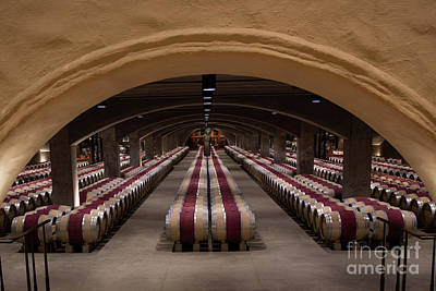 Photograph - Mr Mondavi's Stash Of Cabernets by Shishir Sathe
